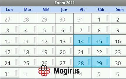 Formación Magirus, enero 2011