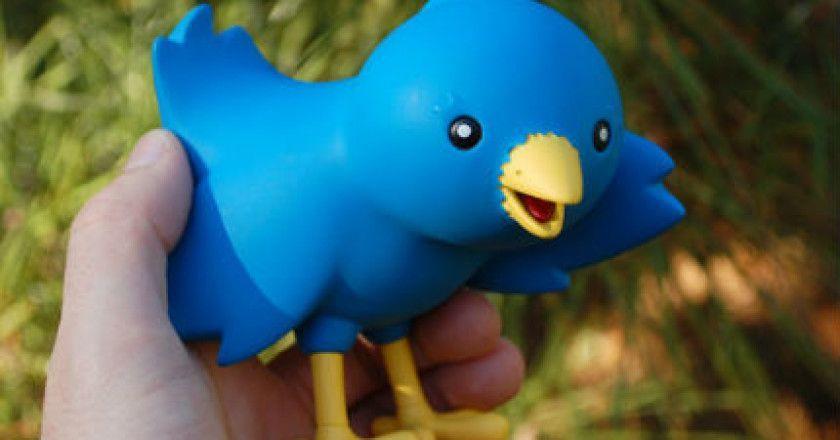 twitter_pajaro
