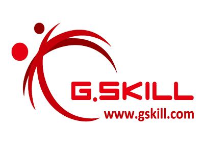 GSKILL llega a España