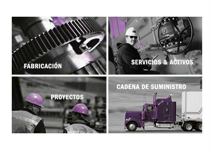 ifs_servicios