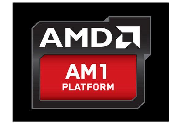 AMDAM1