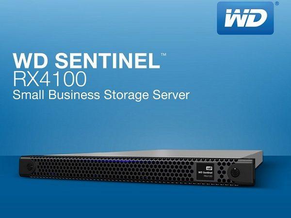 WD Sentinel RX4100