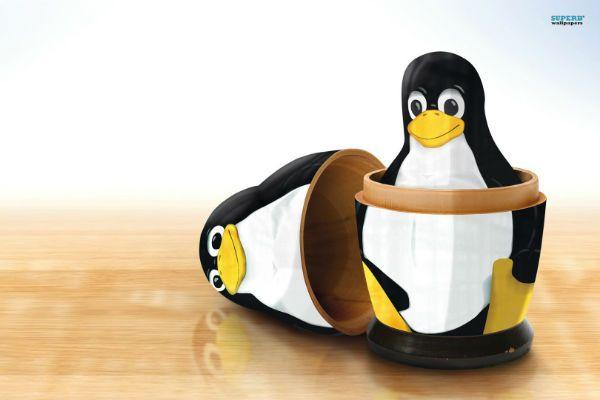 vender_linux