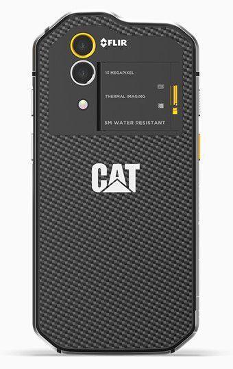 cats60_2