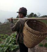 china_rural_alibaba