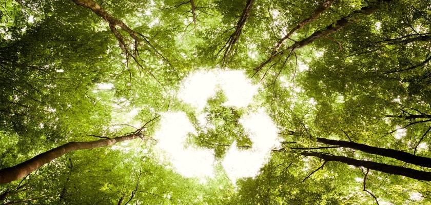 reciclaje_ecofimatica