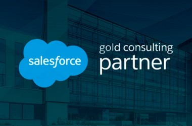vass_salesforce_partner