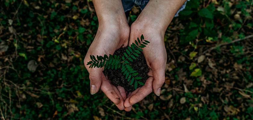 epson_medio_ambiente_sostenibilidad