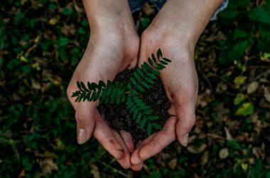 tecnología sostenible